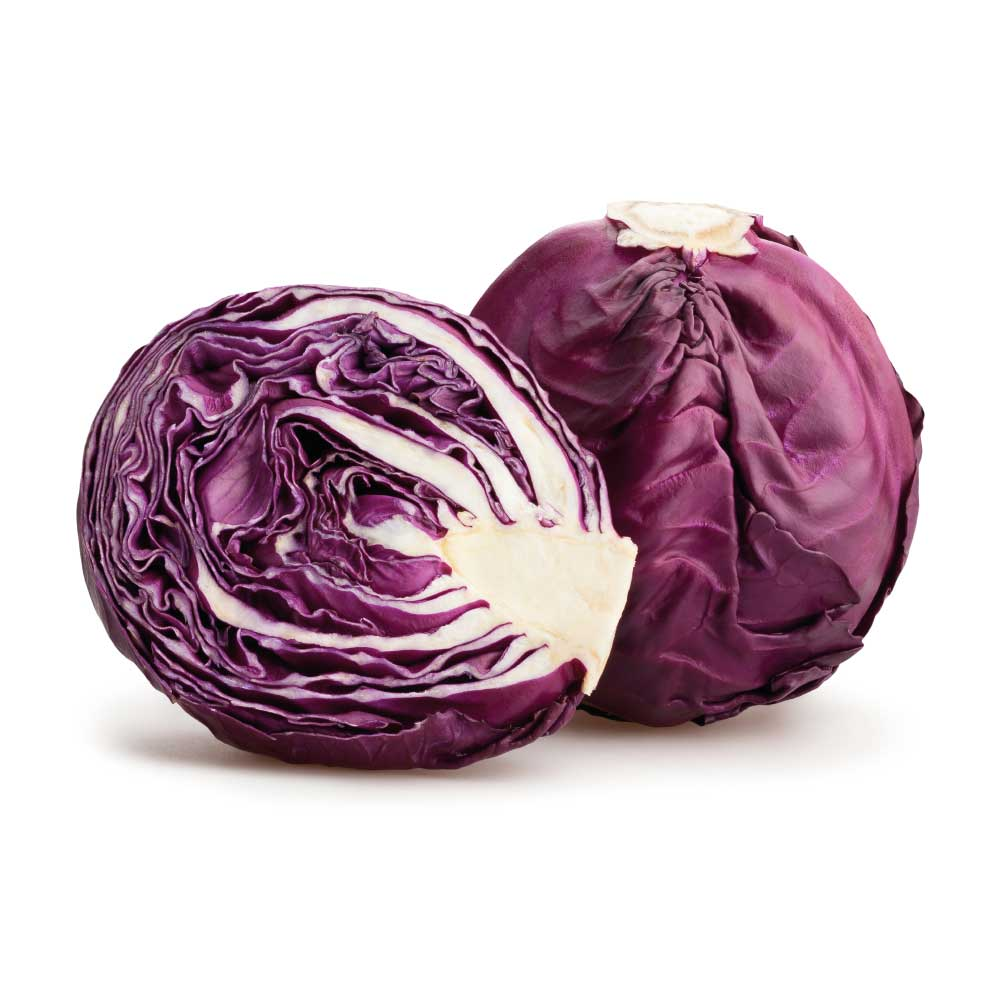 Red - Cabbage